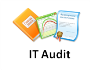 IT Audit.png